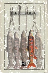 Fish Drink Like Us front cover